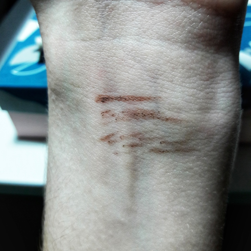 Chella eyebrow pencil swatched on my wrist. It doesn't quite draw smoothly. There are some darker, grittier parts. I don't have a problem with this because my eyebrows are so thick. If yours are thinner or lighter it may not look great.